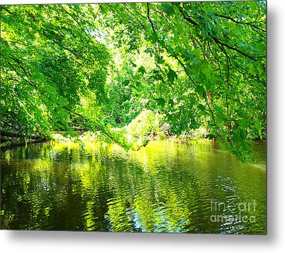 The Green Mirrored Cove Metal Print by Deborah Fay