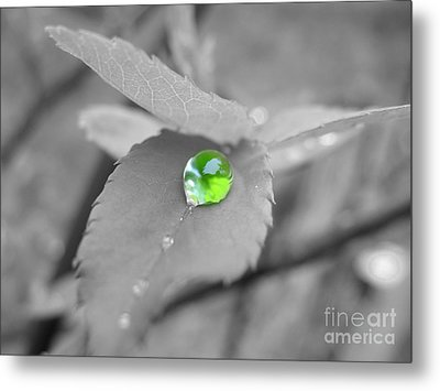 The Green Pearl Metal Print by Patti Whitten