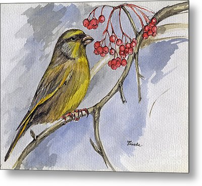 The Greenfinch Metal Print by Angel  Tarantella