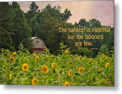 The Harvest Is Plentiful Metal Print