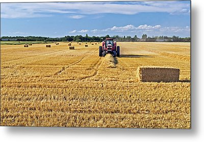 Metal Print featuring the photograph The Harvest by Keith Armstrong