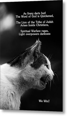 The Heart Of A Lion Metal Print by Lorna Rogers Photography