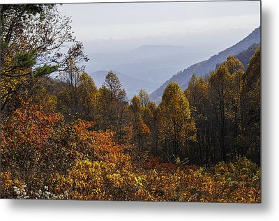 The Heart Of Autumn Metal Print by Lynn Bauer
