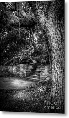 The Hidden Steps 1 Metal Print by Marvin Spates