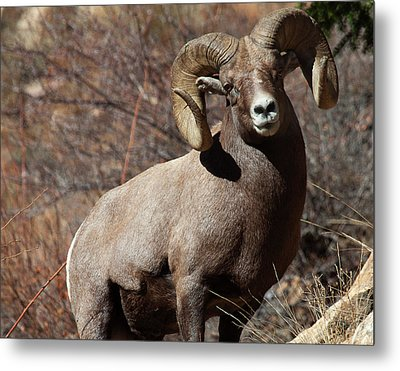 The High And Mighty Metal Print by Jim Garrison