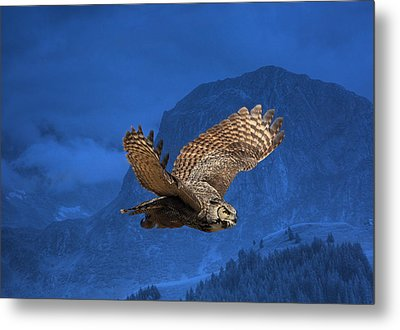 The High Country Metal Print by Donna Kennedy