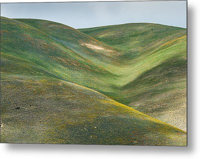 The Hills Of Gorman Ca Metal Print