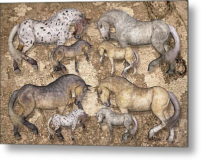 The Horse Collection Metal Print by Betsy Knapp