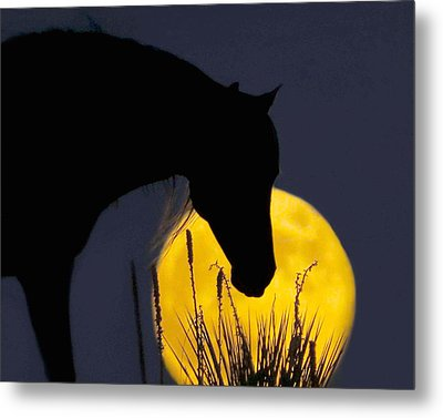 The Horse In The Moon Metal Print