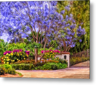 The Jacaranda Metal Print by Michael Pickett