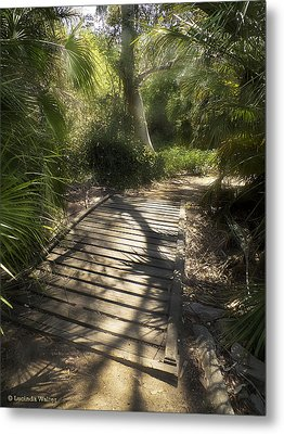 Metal Print featuring the photograph The Journey Along The Path Comes With Light And Shadows by Lucinda Walter