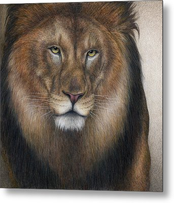 The King Grows Weary  Metal Print by Pat Erickson