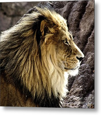 The Kings Pose Metal Print