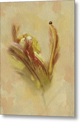 The Lady And The Parrot Tulip Metal Print by Diane Schuster