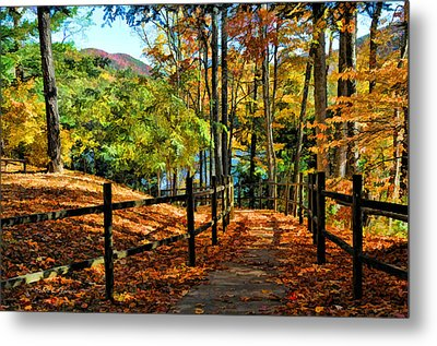 Metal Print featuring the photograph The Lake Path by Kenny Francis