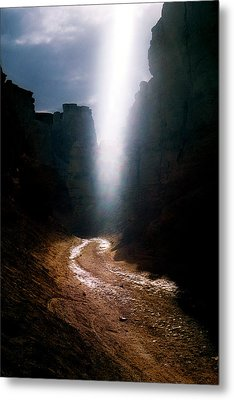 The Land Of Light Metal Print by Dubi Roman