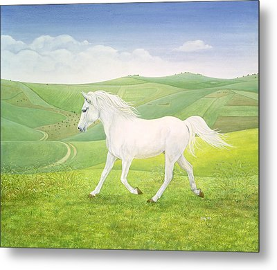 The Landscape Horse Metal Print by Ditz