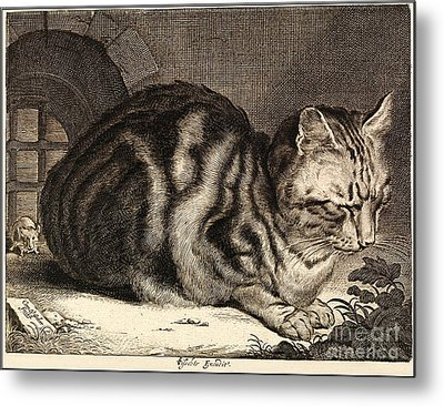 The Large Cat  Metal Print