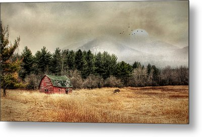 The Last Stand 2 Metal Print by Lori Deiter