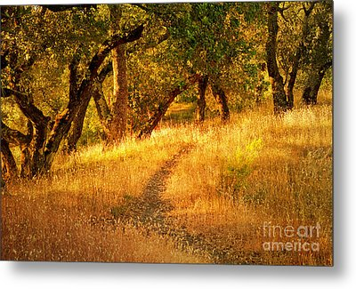 The Late Afternoon Walk Metal Print