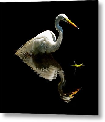 The Leaf Metal Print