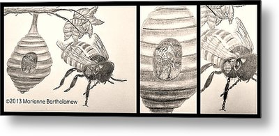 The Life Of The Bee Metal Print by Marianne Bartholomew