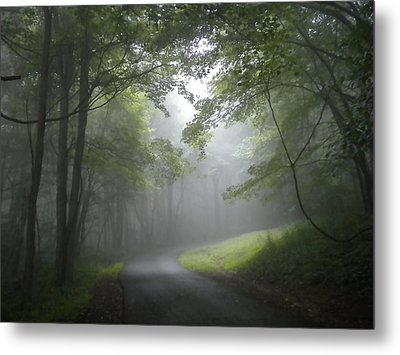 Metal Print featuring the photograph The Light Leading Home 2 by Diannah Lynch