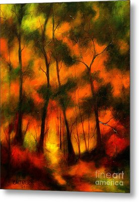 The Lighted Path Metal Print by Alison Caltrider