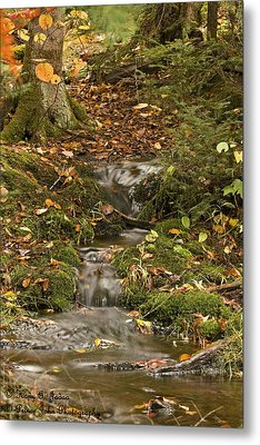 The Little Brook That Could Metal Print