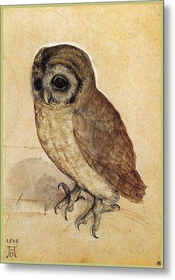 The Little Owl 1508 Metal Print