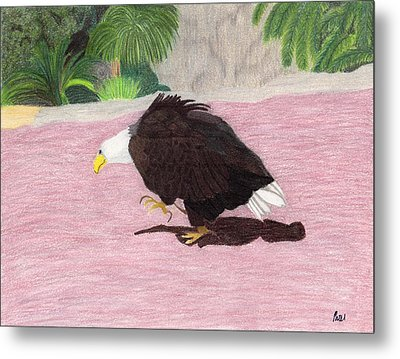 The Lonely Eagle Metal Print by Bav Patel