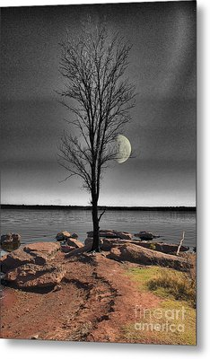 The Lonely Tree Metal Print by Betty LaRue