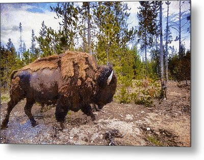 The Long Journey Metal Print by Dan Sproul