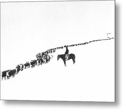The Long Long Line Metal Print by Underwood Archives  Charles Belden