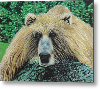 The Look Metal Print by Jeanne Fischer