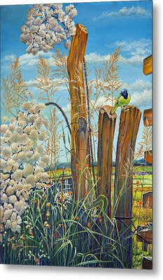 The Lookout Texas Green Jay Metal Print