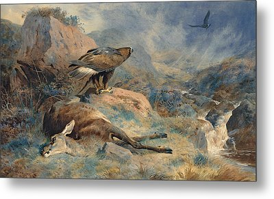 The Lost Hind Metal Print by Archibald Thorburn