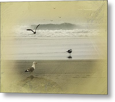 The Love Triangle Metal Print by Diane Schuster