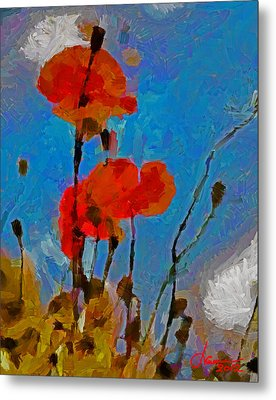 The Lovely Poppies Tnm Metal Print by Vincent DiNovici