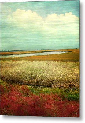The Low Country Metal Print by Amy Tyler