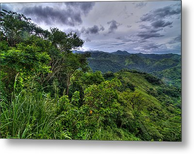 The Lush Greens Of Costa Rica Metal Print by Andres Leon