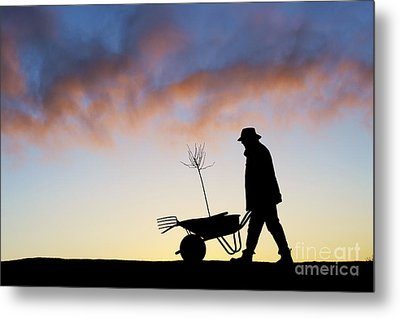 The Man Who Plants Trees Metal Print by Tim Gainey