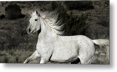 The Mare With The Flying Mane Metal Print