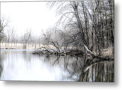 The Marsh Metal Print by Julie Palencia
