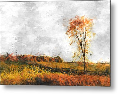 The Meadow Tree - Pt01 Metal Print by Variance Collections