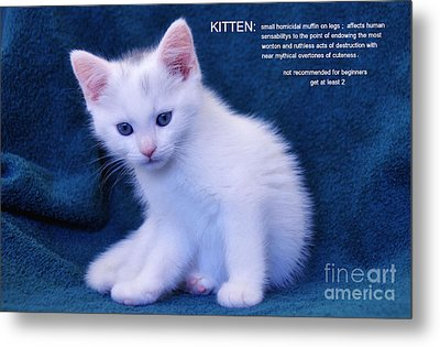 The Meaning Of A Kitten Metal Print by Elaine Manley