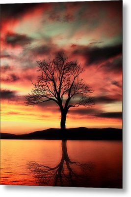 The Memory Tree Metal Print by Ally  White