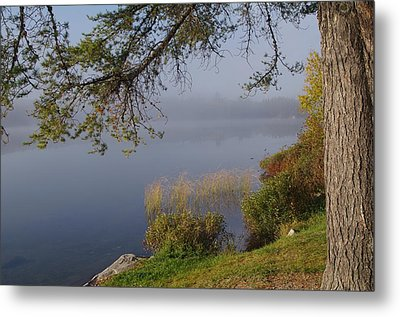 The Mist Will Soon Be Gone Metal Print