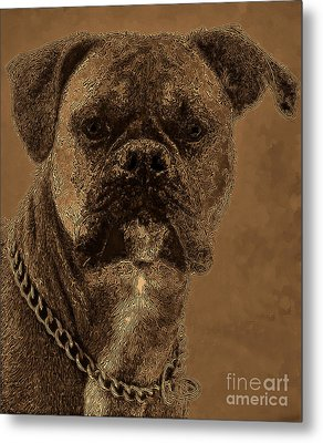 The Modern Boxer Bulldog Metal Print by Lesa Fine