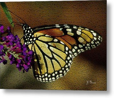 The Monarch / Butterflies Metal Print